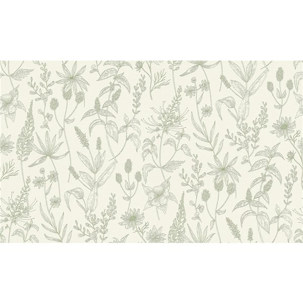 Papier peint en vinyle non encollé avec motif floral Nami par Advantage couvrant 57,8 pi², olive