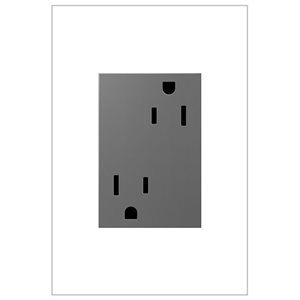 Grande prise de courant gris magnésium résidentielle décorative inviolable adorne par Legrand de 15 A