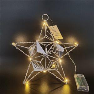 IH Casa Decor Silver Star Ornament with White LED Light