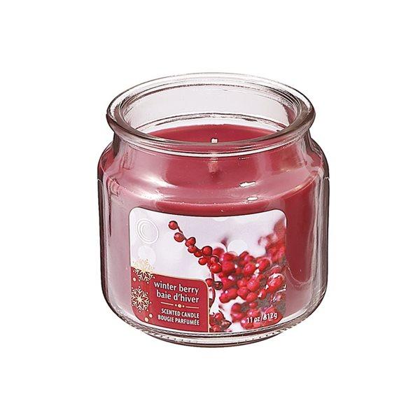 Bougie parfumée en pot de 11 oz d'IH Casa Decor, senteur baie d'hiver, ens. de 2