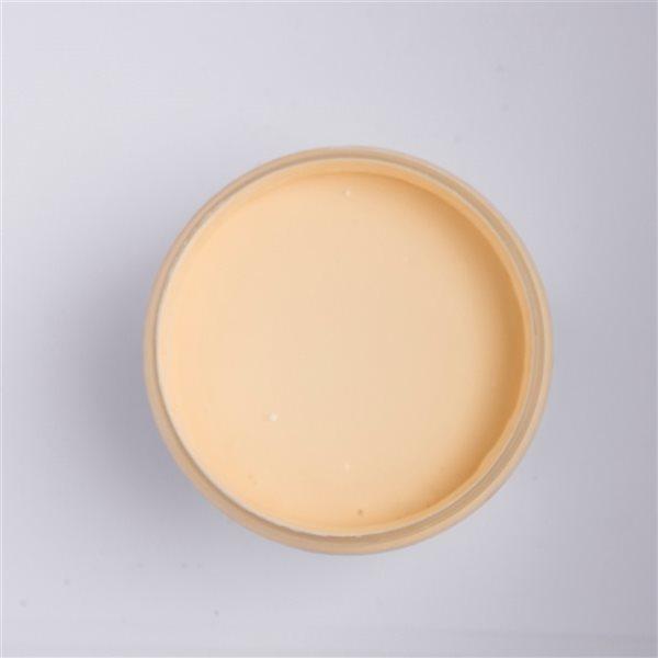 Colorantic Orangesicle Light Orange Chalk-Based Paint (Quart Size)