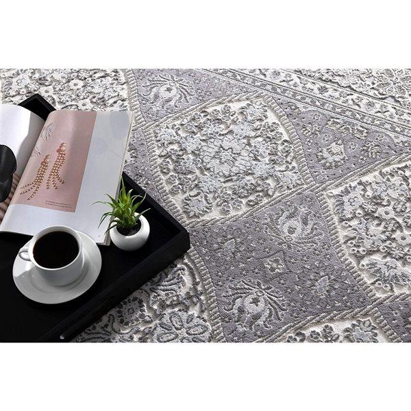 Tapis Oasis par Rug Branch rectangulaire de 4pi x 6pi, motif abstrait, gris
