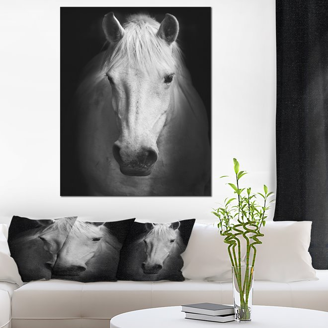 white horse canvas print 30 x 40 rona