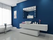 Mirror with LED Lighting - 48
